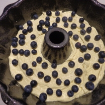 Sprinkled blueberries